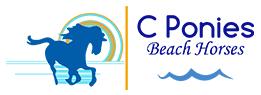 C Ponies Bradenton Beach Horses