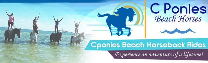 CPonies Beach Horseback Riding Tours